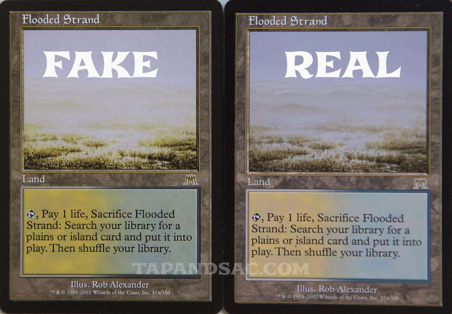 Beginners need to know fake MTG cards exist.